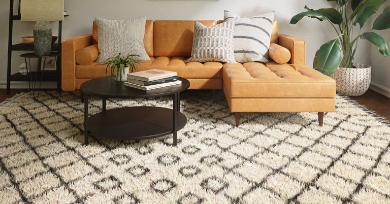 How to Choose the Right Rug that Perfectly Fits